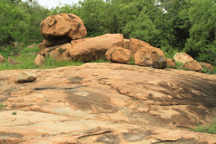 Geological features of the Greater Woodmead Estate